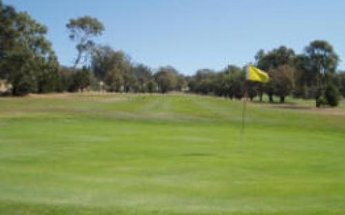 2nd and 11th Green